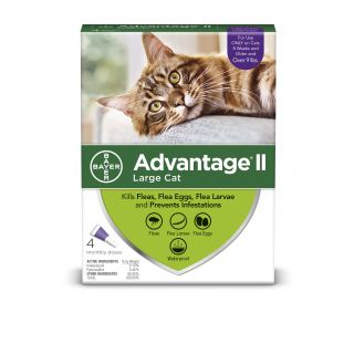 Advantage II Purple 4 pack  Cats  9 lbs & over