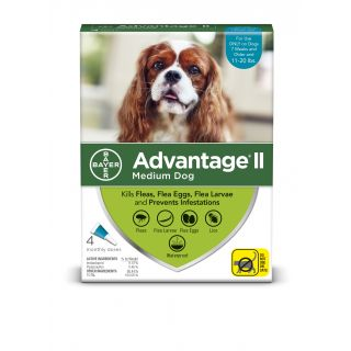 Advantage Teal II 4 pack- Dogs 11 - 20 pounds