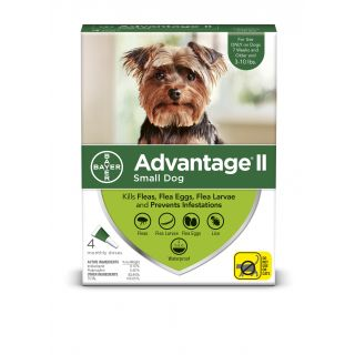 Advantage II Green 4 pack - Dogs 10 Lbs & under