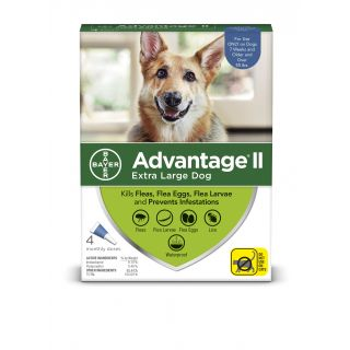 Advantage II Blue 4 pack- Dogs over 55 pounds