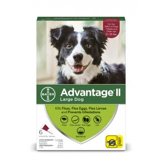 Advantage II Red 6 pack- Dogs 21 - 55 Lbs