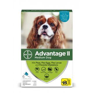 Advantage II Teal 12 pack- Dogs 11 - 20 Lbs
