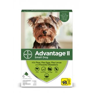 Advantage II Green 6 pack- Dogs 10 Lbs & under