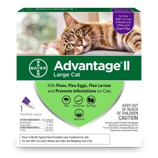 Advantage II Purple 6 pack  Cats 9 Lbs & over