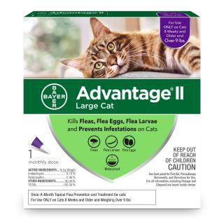 Advantage II Purple 6 pack  Cats 9 Lbs & over